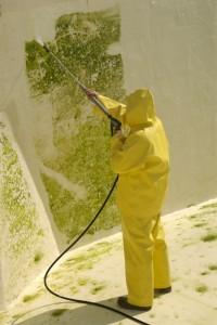 algae cleaning